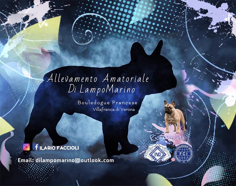 Nasce il progetto ENCI FCI Di LampoMarino
